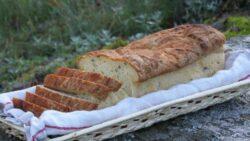 glutenfritt majsbröd med solrosfrön