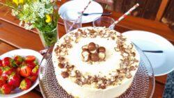 glutenfri cheesecake med delicious